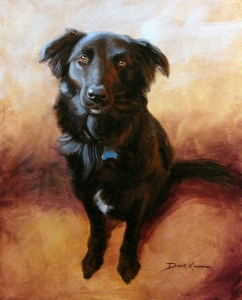 pet portrait of dog